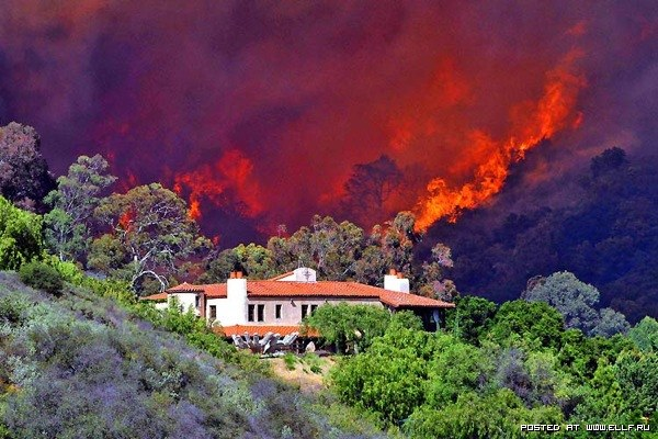 california-fire-incendios(1).jpg